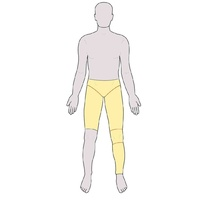 Pants with Leg excluding Sock - Long Legs